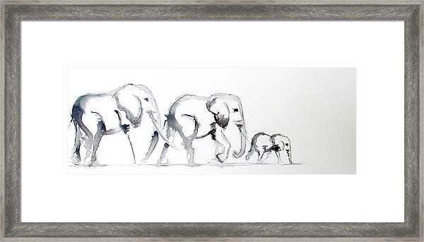 Little Elephant Family Framed Print