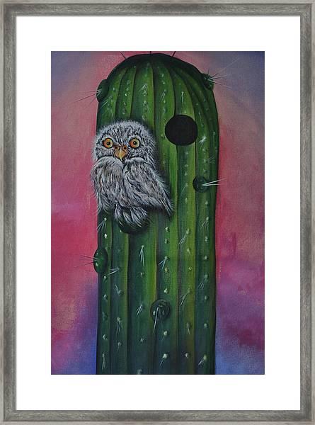 Little Elf Owl Framed Print