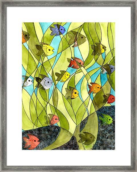 Little Fish Big Pond Framed Print