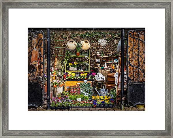 Framed Print featuring the photograph Little Market by Nick Bywater