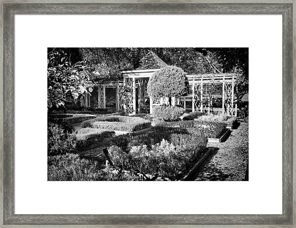 Little Park In Philadelphia 1 Framed Print