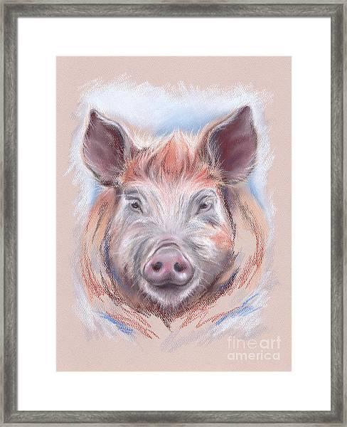 Little Pig Framed Print