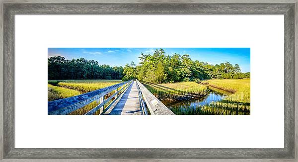 Little River Marsh Framed Print