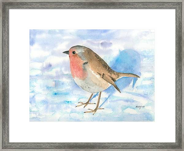 Little Robin Framed Print