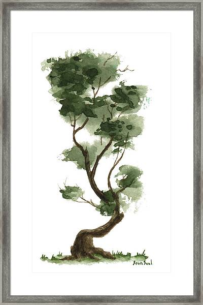 Little Tree 132 Framed Print
