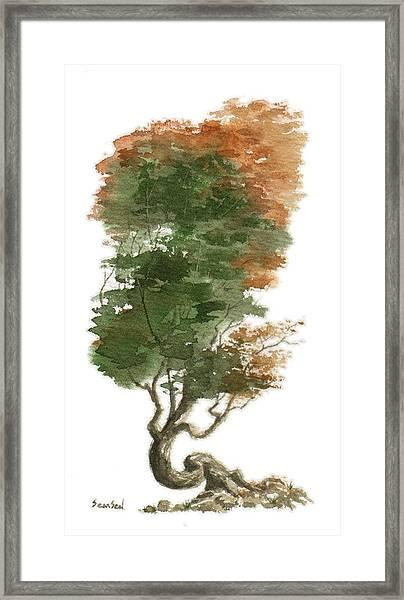 Little Tree 15 Framed Print