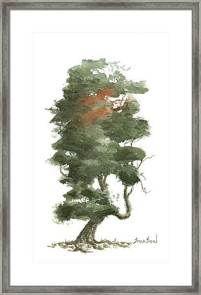 Little Tree 16 Framed Print