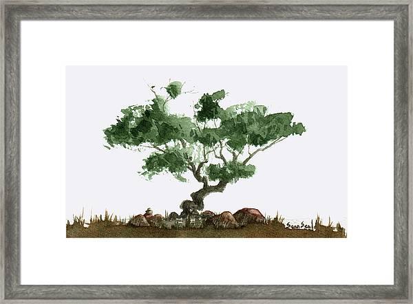 Little Tree 2 Framed Print