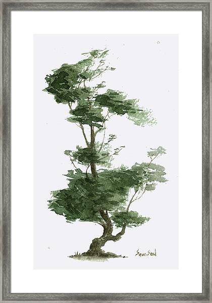 Little Tree 4 Framed Print