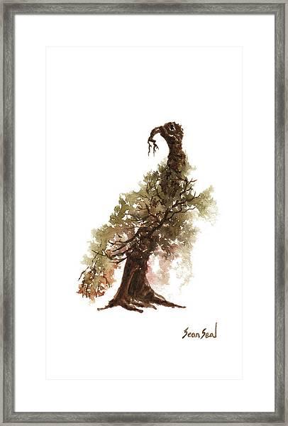 Little Tree 69 Framed Print