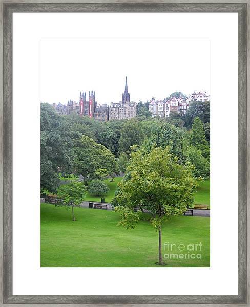 Little Tree Framed Print