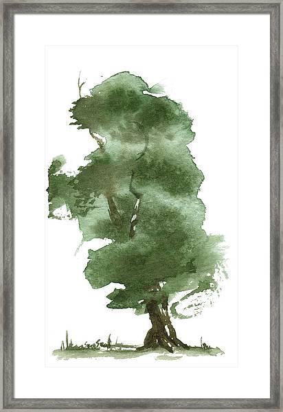 Little Zen Tree 162 Framed Print