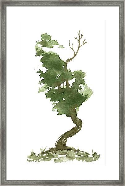 Little Zen Tree 177 Framed Print