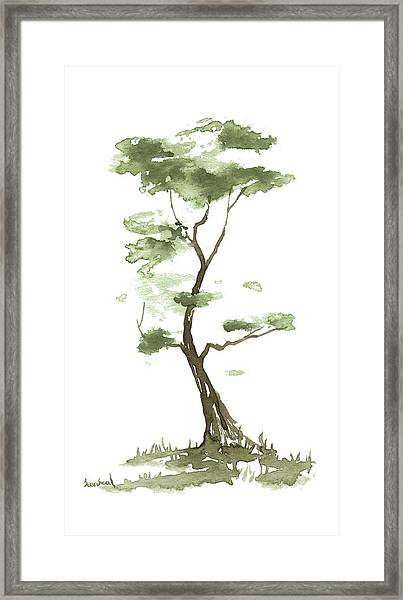 Little Zen Tree 204 Framed Print