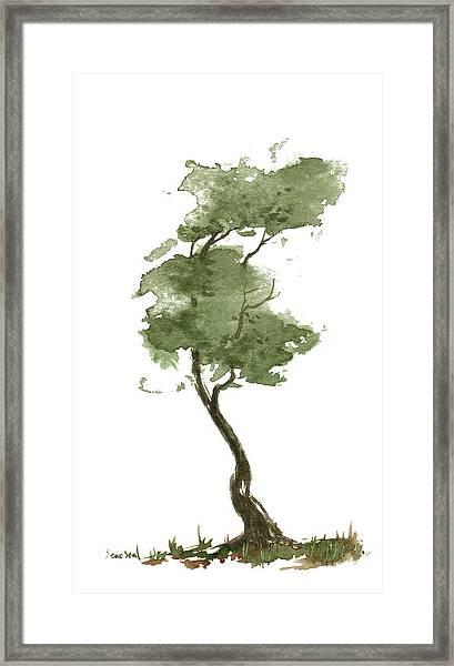 Little Zen Tree 206 Framed Print