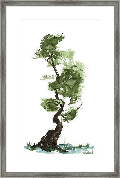 Little Zen Tree 207 Framed Print