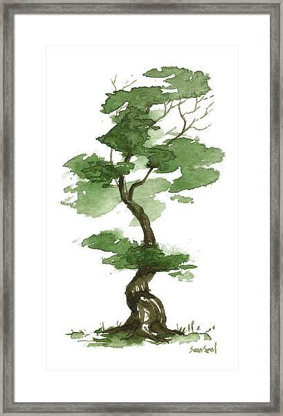 Little Zen Tree 208 Framed Print