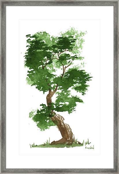 Little Zen Tree 311 Framed Print