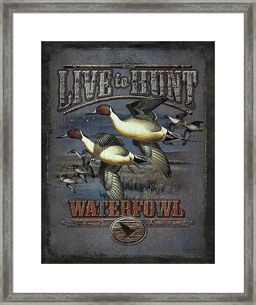 Live To Hunt Pintails Framed Print