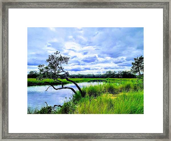 Living Low Framed Print