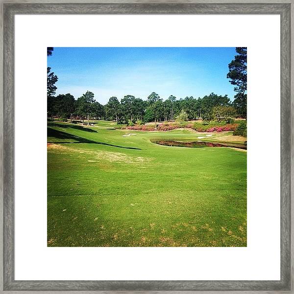 Living The Dream #pinehurst4 #4 Framed Print