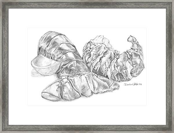 Lobster Shell Drawing Framed Print
