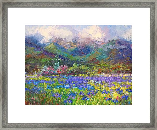 Local Color Framed Print