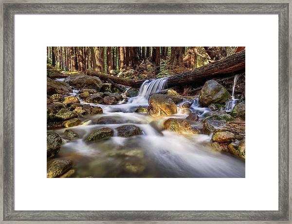 Log Falls On Limekiln Creek Framed Print