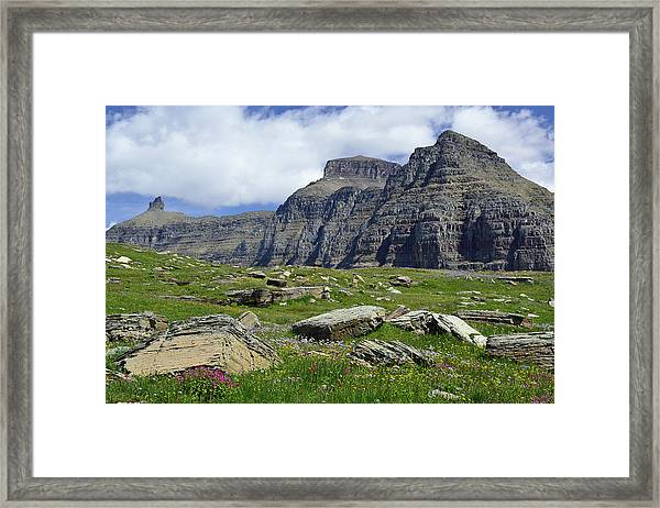 Logan Pass Meadow And Mountains In Glacier National Park Framed Print