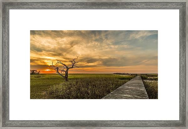 Lone Cedar Dock Sunset - Dewees Island Framed Print