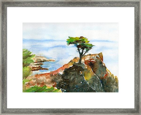 Lone Cypress Pebble Beach Fog Framed Print