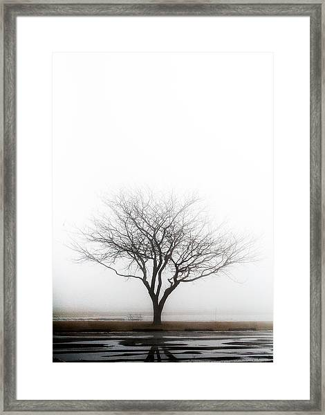Lone Reflection Framed Print