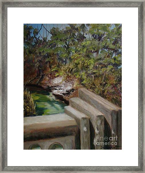 Lone Star Bridge Framed Print