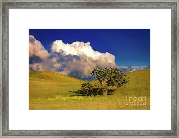 Lone Tree With Storm Clouds Framed Print