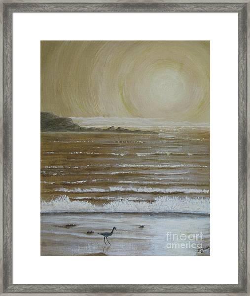 Lonely Beach Sunrise Framed Print by Dana Carroll