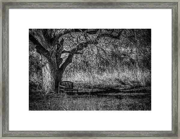 Lonely Bench Framed Print