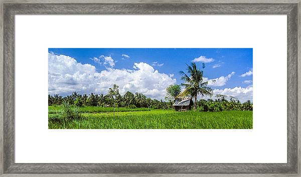 Lonely Rice Hut Framed Print