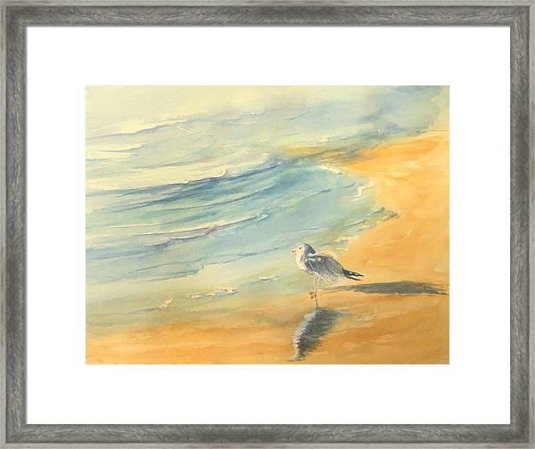 Long Beach Bird Framed Print