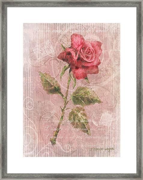 Long Stemmed Rose Framed Print
