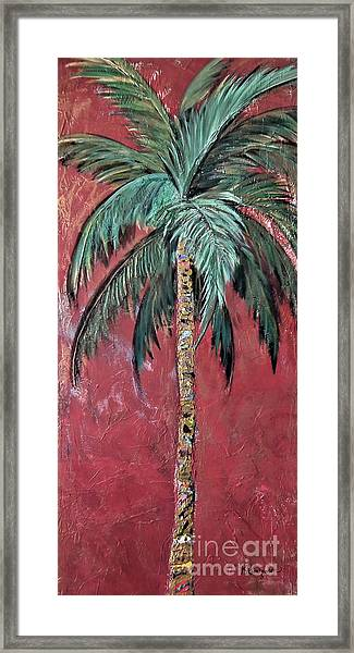 Longboat Key Palm Framed Print