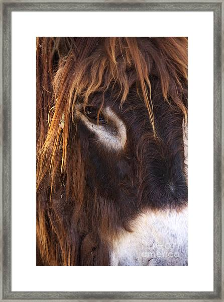 Look To Me Framed Print