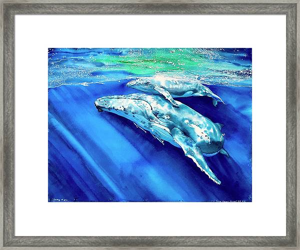 Looking At You. Framed Print