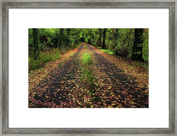 Looking Down The Lane Framed Print