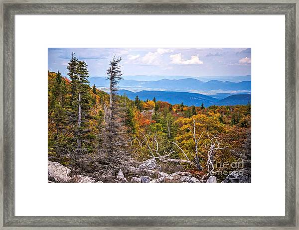 Looking East From Bear Rocks 4290c Framed Print