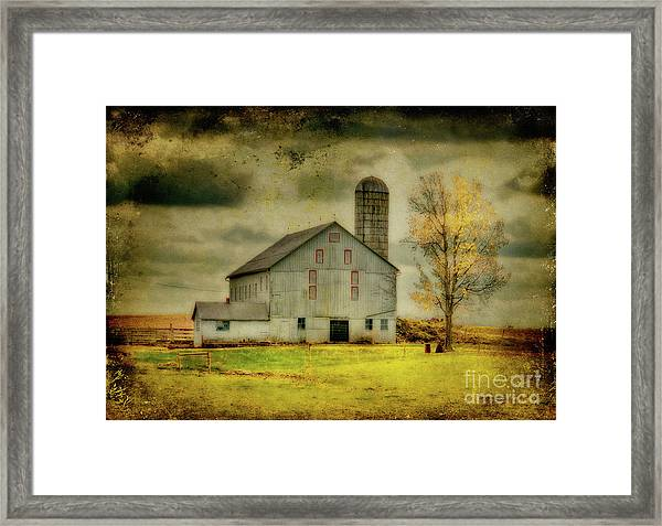 Framed Print featuring the photograph Looking For Dorothy by Lois Bryan