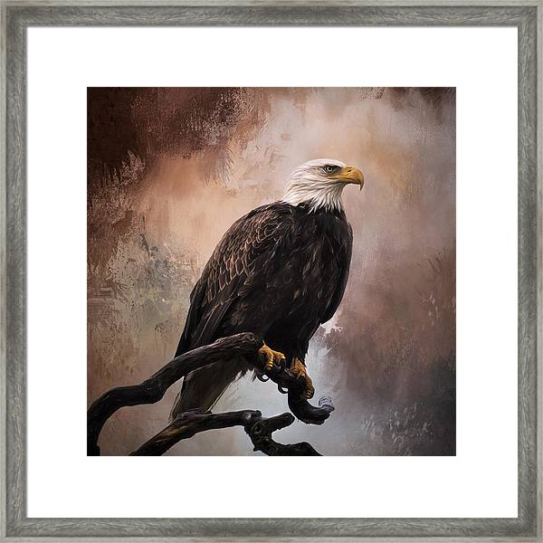 Looking Forward - Eagle Art Framed Print
