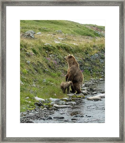 Looking Up The Bluff Framed Print