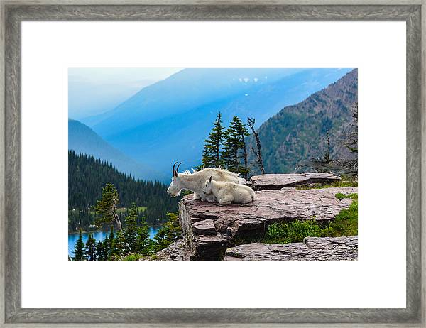 Lookout Ledge Framed Print
