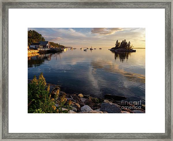 Lookout Point, Harpswell, Maine  -99044-990477 Framed Print