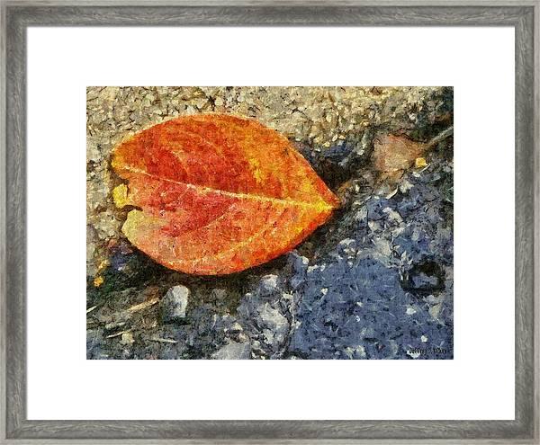 Loose Leaf Framed Print